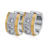 Elegantni uhani kombinacije jekla, pozlate in kristalov